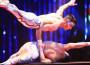 Lezione di circo, lezione di vita