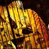 Cagliari: quando la stampa non censura il circo, i lettori si scaldano (contro gli animalisti)