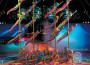 Il Cirque du Soleil mette la coppola