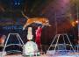 "Tar Molise: i divieti ""animalisti"" non proteggono gli animali dei circhi"