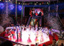 Il circo artico