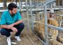 """""""Animali nei circhi? Ben tenuti"""". L'intervista al veterinario Riccardo Mancini"""