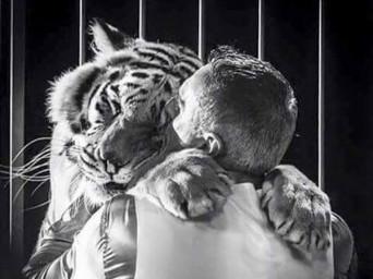 """""""Ho sempre visto animali tenuti in eccellenti condizioni fisiche e psichiche"""""""