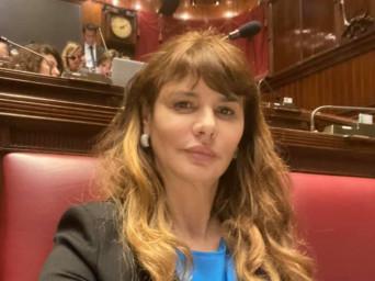 Aree per i circhi: la proposta di legge dell'onorevole Baldini coglie nel segno