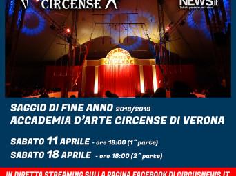 Il circo nelle case: l'iniziativa di Circusnews