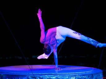 Viva il Circo. La seconda edizione in arrivo a Latina