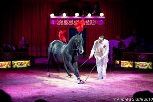 Circo Medrano, Braian Casartelli (foto Andrea Giachi)