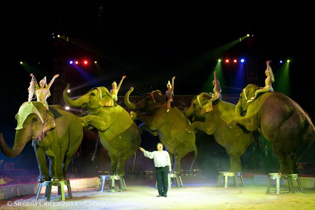 circo-americano-foto-stefania-ciocca