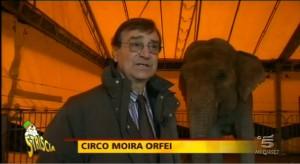 Walter Nones intervistato a Striscia la notizia