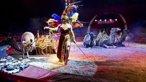 Il circo Medrano a Roma (foto Emanuele Vergari)