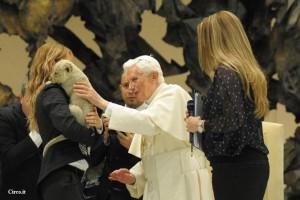 Una foto che ha fatto il giro del mondo: Benedetto XVI accarezza il leoncino nella Sala Nervi