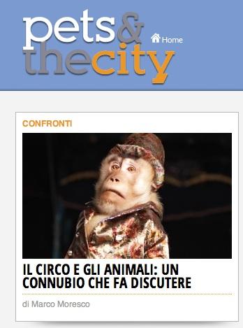 circo-e-animali