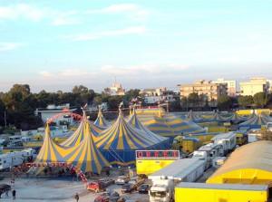 Il circo di Darix Martini