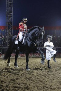fieracavalli-equestre