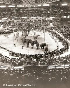 Il circo Americano è uno dei primi, non solo in Italia, ad entrare nei palazzi dello sport