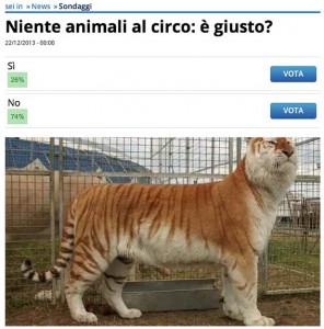 circo-parma