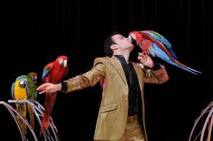 Alessio Fochesato coi suoi splendidi pappagalli