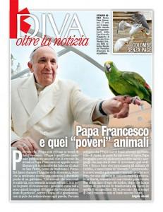 diva-e-donna-pappagallo