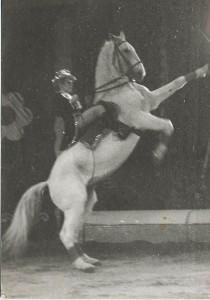 Loredana Bellucci in versione cavallerizza nel circo di famiglia