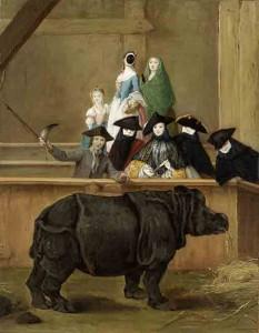 Pietro Longhi, rinoceronte a Venezia