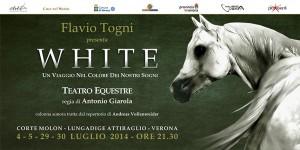 whitte-flavio-togni
