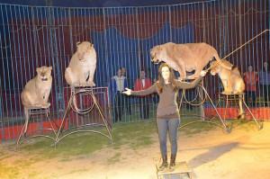 L'avvocato Patrizia Giranu in una veste insolita, in gabbia coi leoni di Tairo Caroli