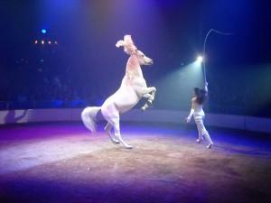 """Il """"debout"""" presentato da Ivette alla Fete Lilloise du Cirque"""