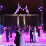 live-circus1