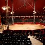live-circus4