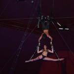 live-circus5