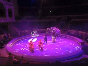 Il circo Ciniselli ha riaperto i battenti