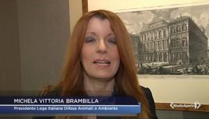 L'onorevole Brambilla intervistata oggi da Studio Aperto