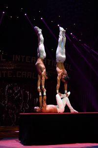 Il Trio Olimpos